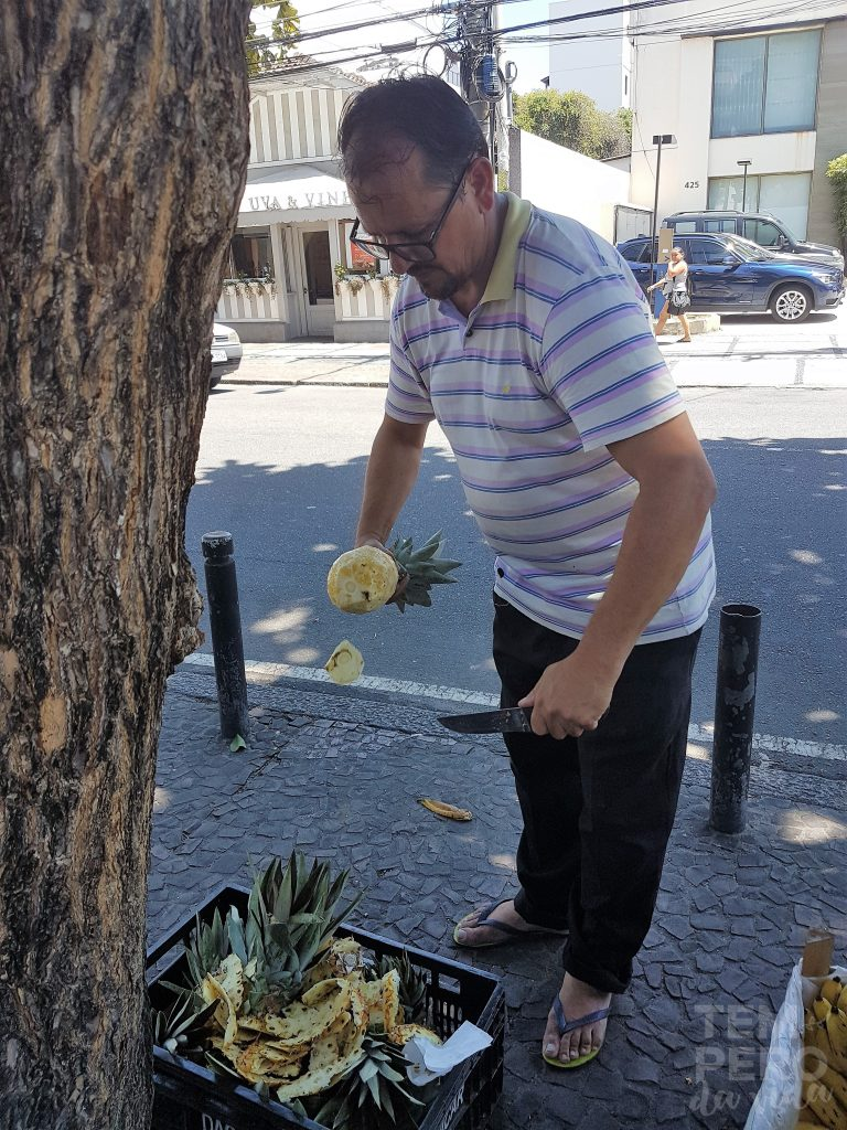 abacaxis do Sr. Manoel em plena Olegário Maciel, Barra da Tijuca