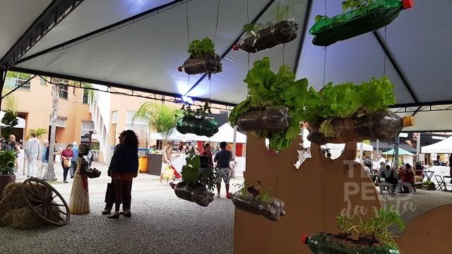 Feira de Orgânicos e Pequenos Produtores Shopping downtown
